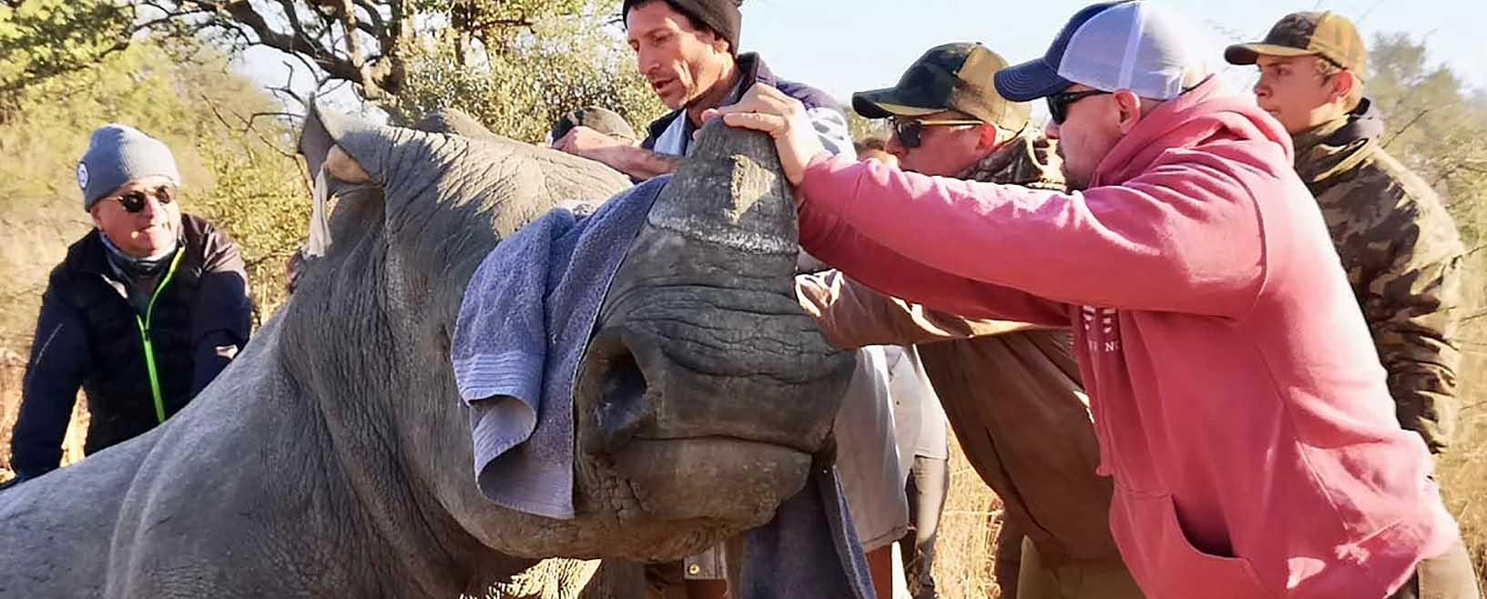 Endangered Rhino Conservation ERC Saving Rhinos Slider Image 3